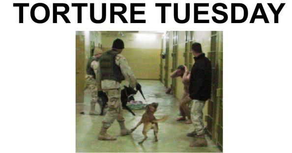 rapporto torture 1